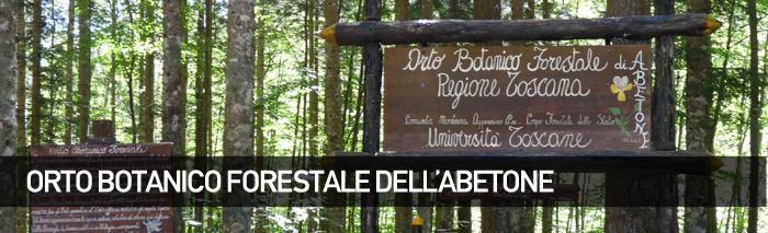 Protetto: Orto Botanico Forestale dell'Abetone