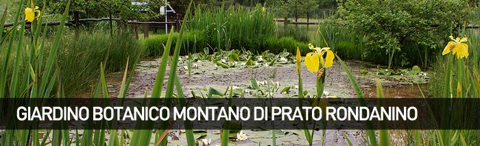 Giardino Botanico Montano Pratorondanino di Campo Ligure