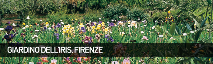 Giardino dell'Iris – Firenze