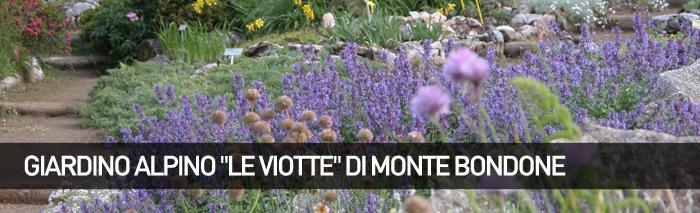 Giardino Botanico Alpino delle Viotte di Monte Bondone
