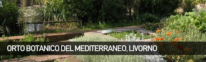 Orto Botanico del Museo di Storia Naturale del Mediterraneo