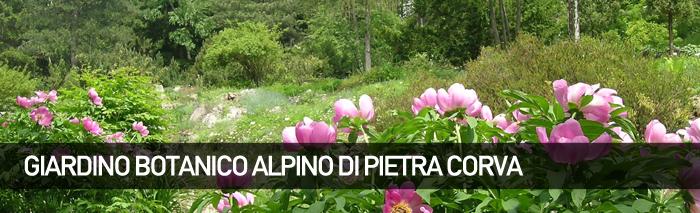 Giardino Alpino di Pietra Corva
