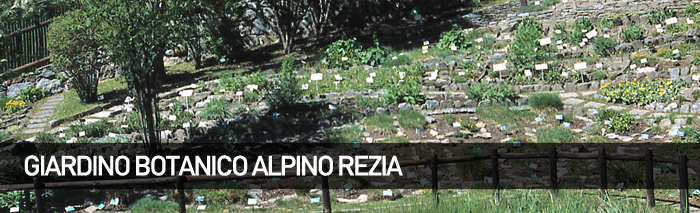 Giardino Alpino Botanico Rezia
