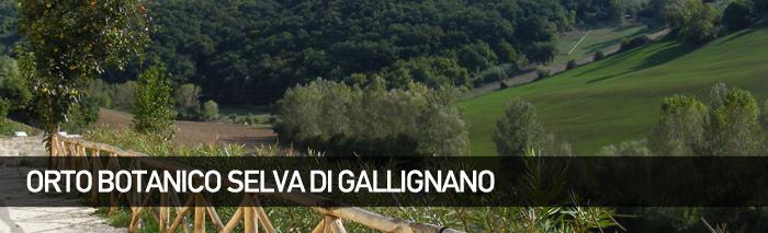 Orto Botanico Selva di Gallignano