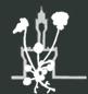 Società Botanica Italiana