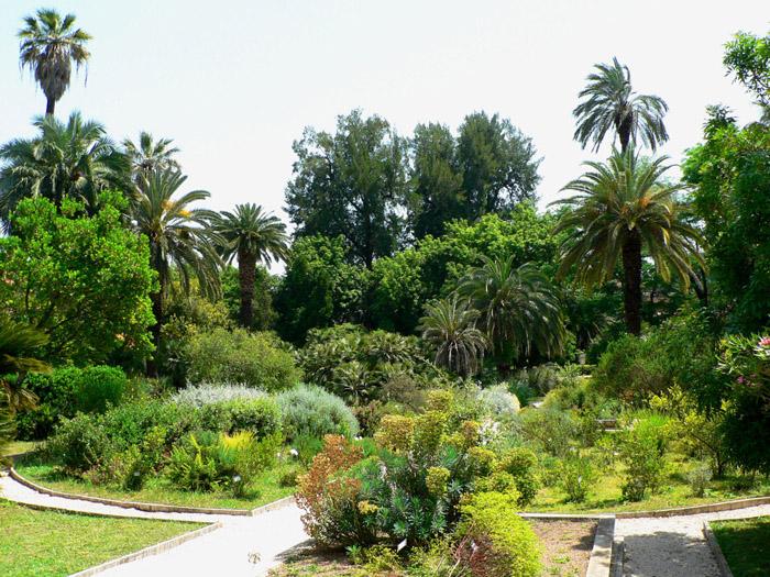 Museo orto botanico sapienza universit di roma orto - L orto in giardino ...