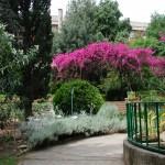 Scorcio dell'Orto Botanico