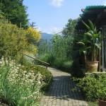 Il viale centrale dell'Orto Botanico di Bergamo