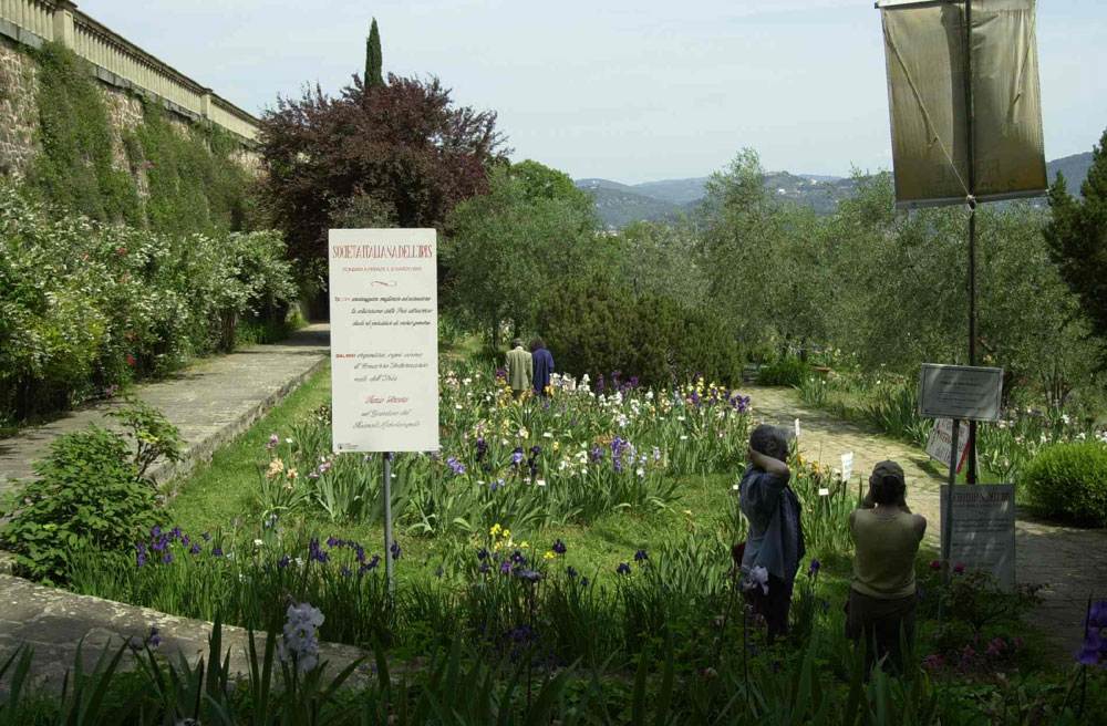 Giardino dell 39 iris firenze orto botanico d 39 italia for Giardino firenze