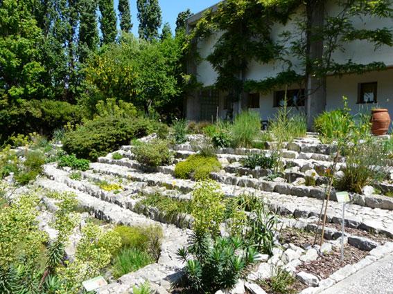 Orto botanico del centro ricerche floristiche marche a j - Giardino roccioso foto ...
