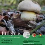 loca_funghi2016