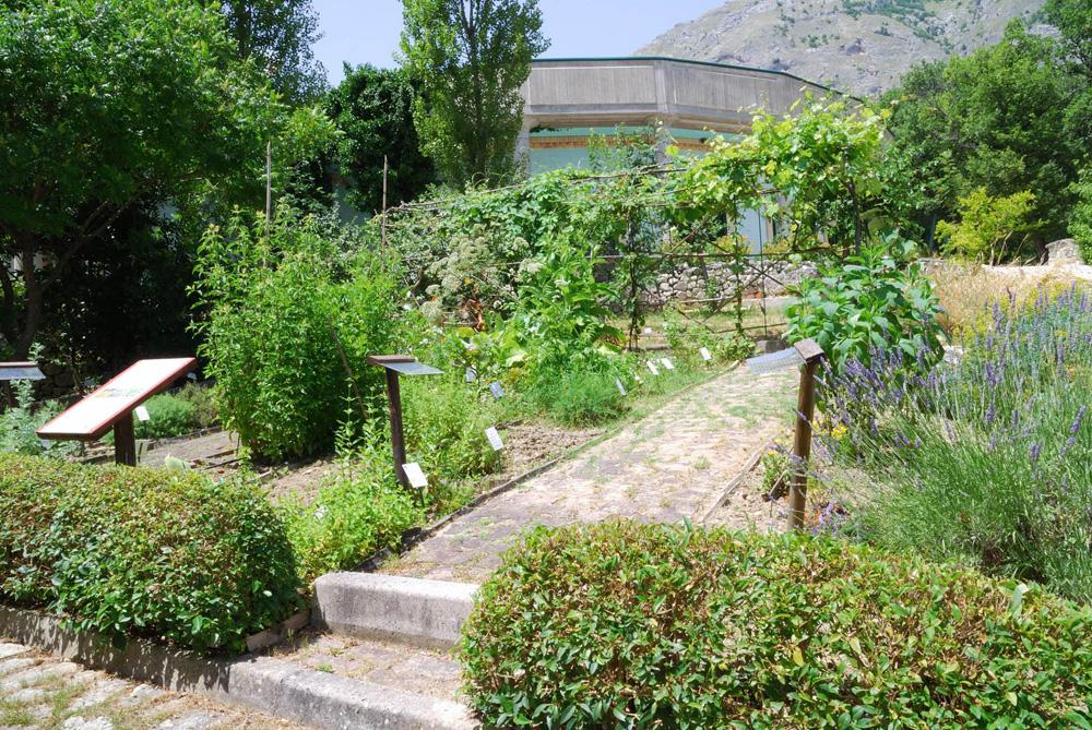 giardino botanico della majella michele tenore orto