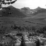 Il giardino nell'estate del 1954